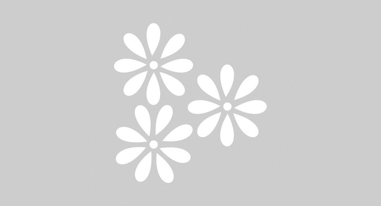 vinilo dibujos infantiles flores Y1D-FLO3 del dibujo infantil