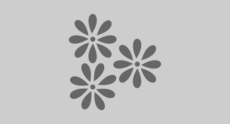 vinilo dibujos infantiles flores Y2D-FLO3 del dibujo infantil